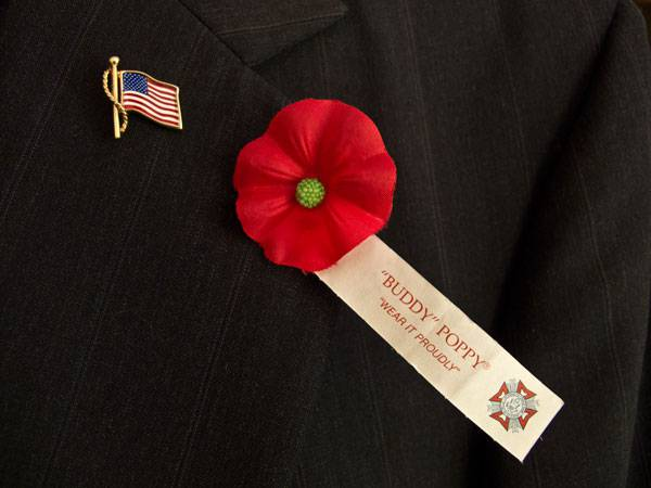 The poppy flower and its significance to memorial day avas flowers 73c64b3e66fa8f1ced21a301e2202b30g mightylinksfo