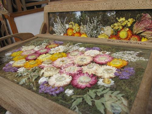 Fold In Half Table picture on using dried or pressed flowers to make spring last all year with Fold In Half Table, Folding Table f84f7065bbb92563d8f39f97a3504c7f